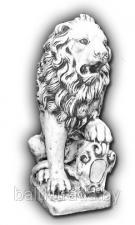 Лев левый — С 121