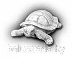 Черепаха — С 116
