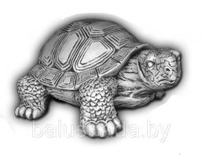Черепаха Б. — С 155